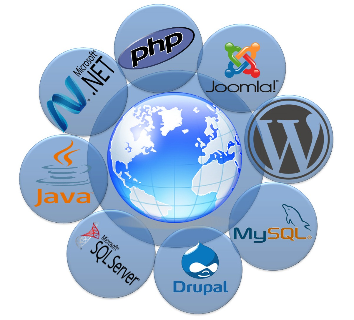 web development in chennai